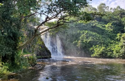 Griffins Falls in Mabira forest